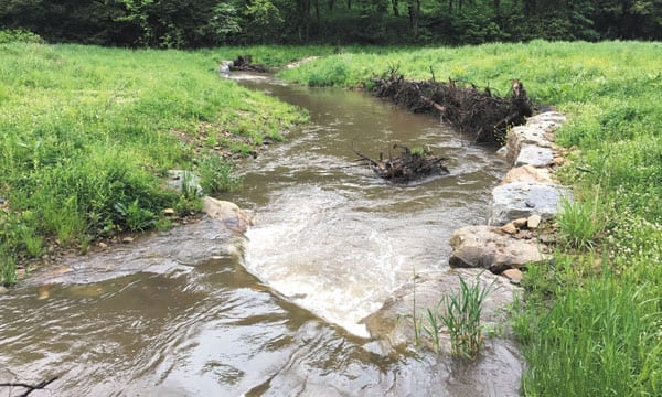West Virginia's Stream Restorationists